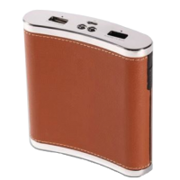 portable mobile power bank XDR PowerFlask